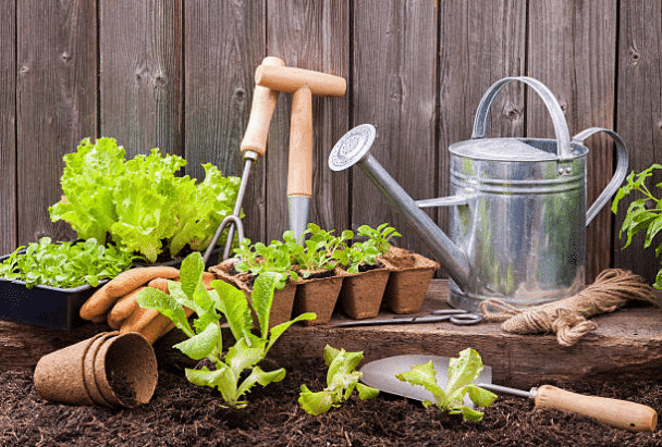 jardiner jardinage outils Août au jardin