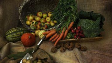 octobre au jardin légumes automne