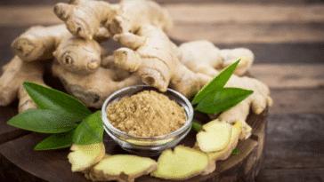 gingembre plantes aphrodisiaque