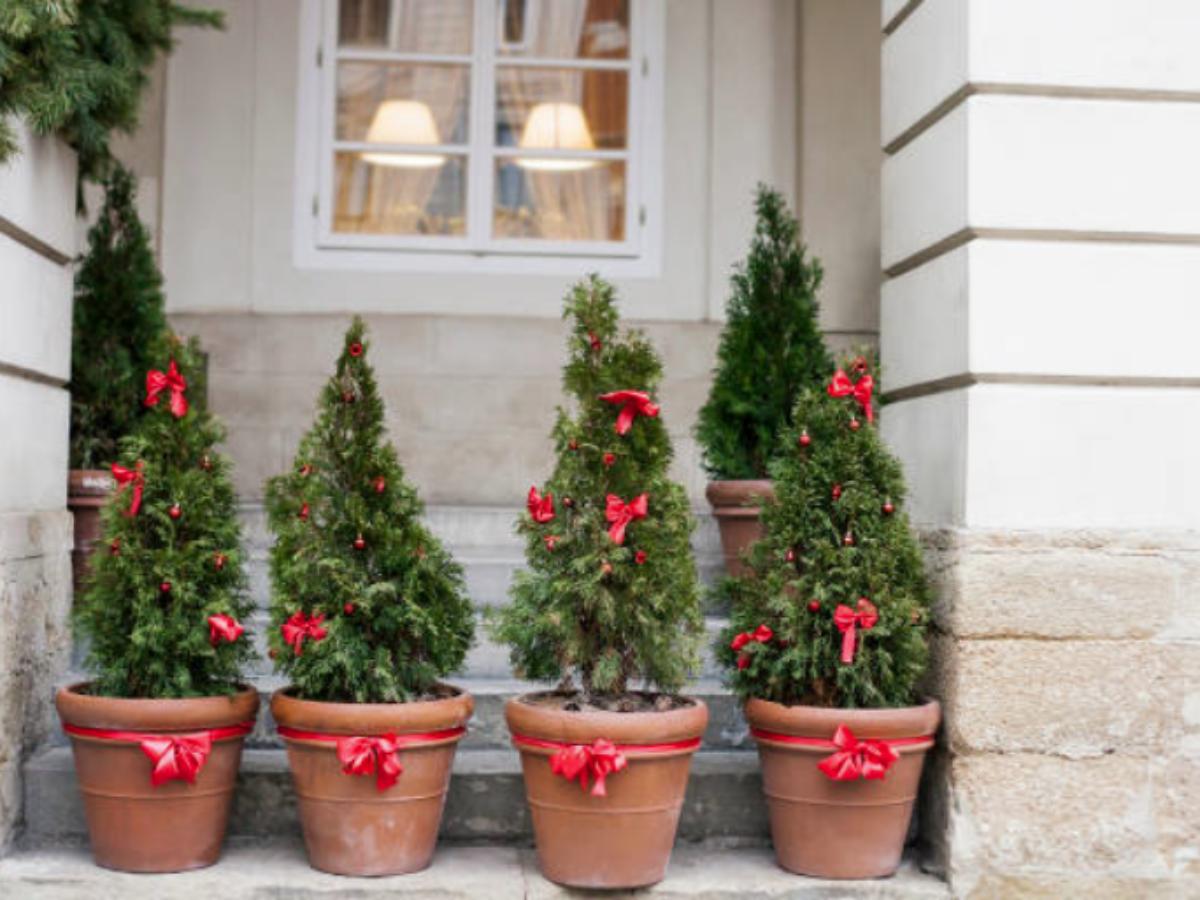 Jardin De Noel 15 Idees Pour Decorer L Exterieur De Votre Maison