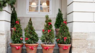 Jardin De Noël : 15 Idées Pour Décorer Lu0027extérieur De Votre Maison