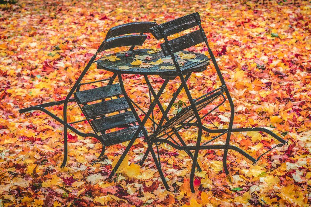 automne feuilles