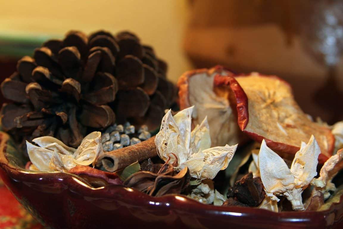 pomme de pin cannelle pot pourri