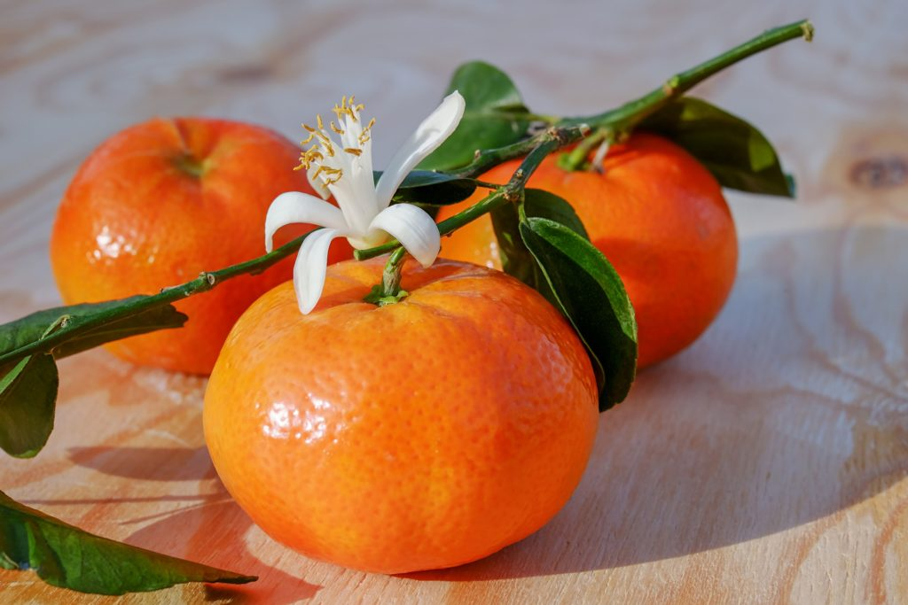 clémentine fruits