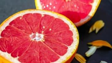 février fruits légumes saison pamplemousse