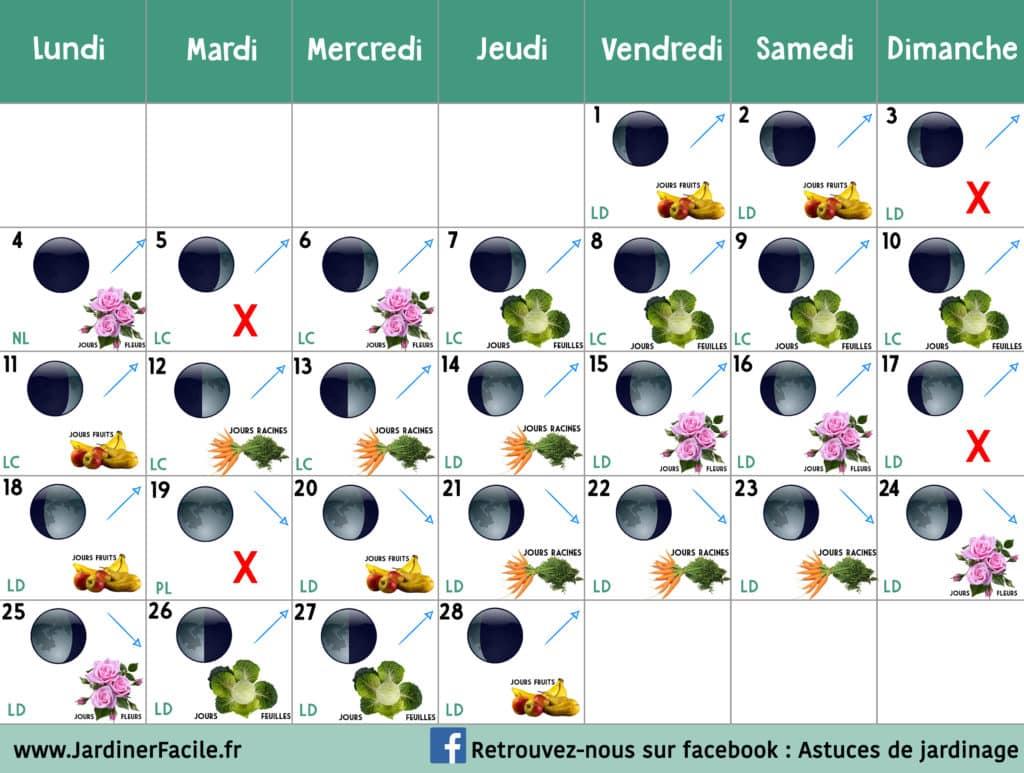 Calendrier Jardinage Lunaire 2019.Calendrier Lunaire Jardiner Avec La Lune De Fevrier 2019