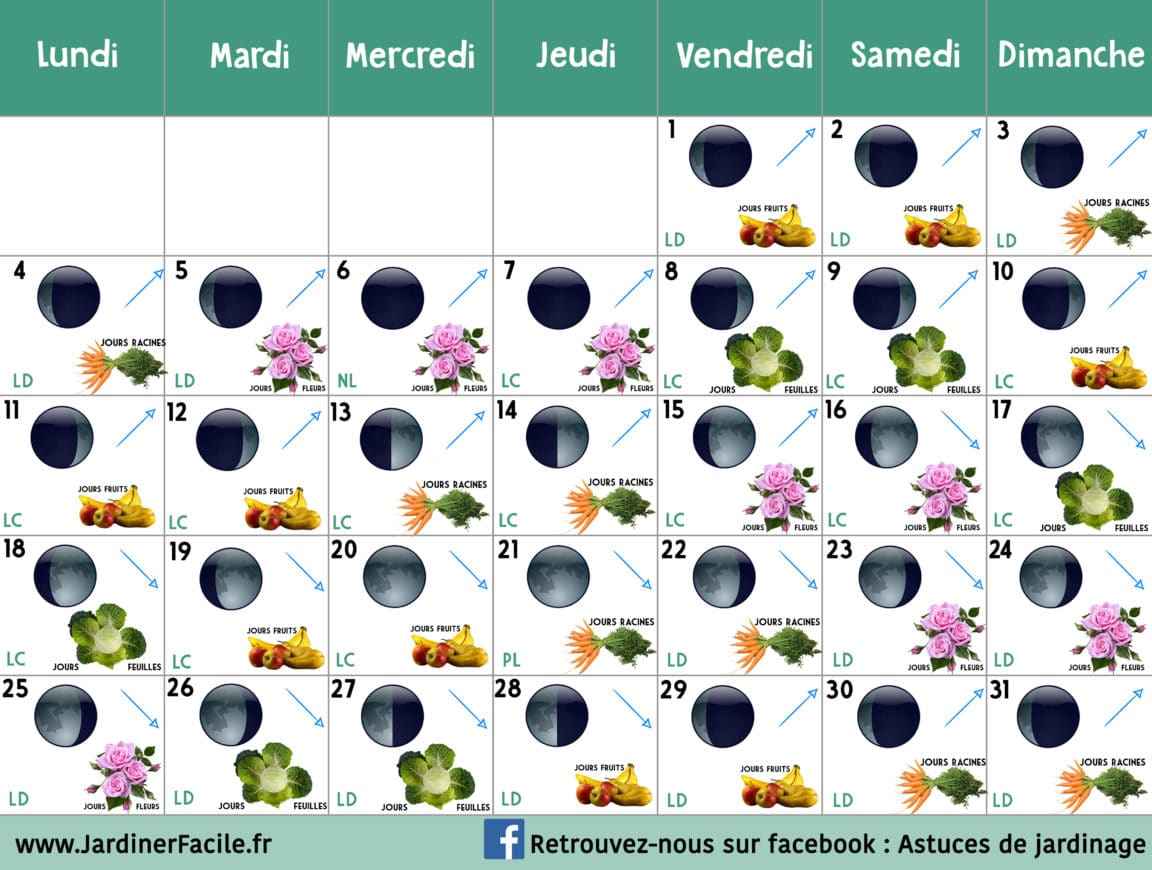 calendrier lunaire jardiner avec la lune de mars 2019. Black Bedroom Furniture Sets. Home Design Ideas