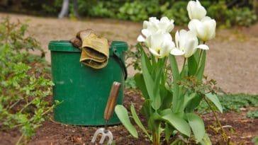 mars au jardin jardiner