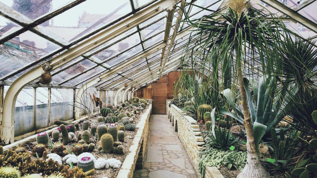 jardin plastique serre