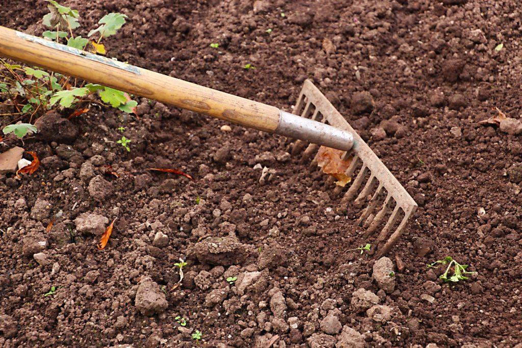 mars au jardin jardiner semis