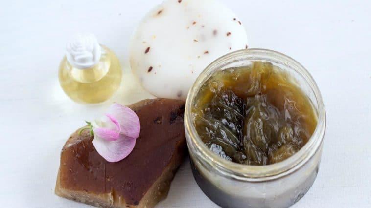 recette anti-pucerons naturelle savon noir