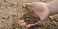 fertilisants naturels