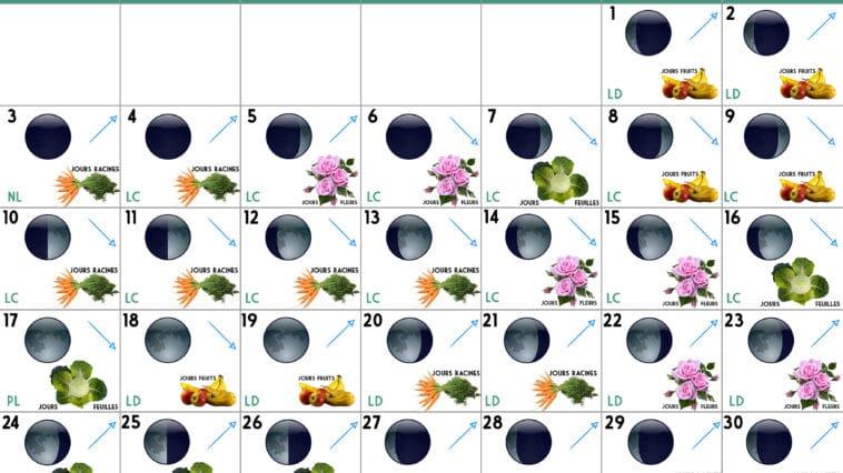 Calendrier lunaire Juin 2019
