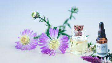 migraines plantes médicinales