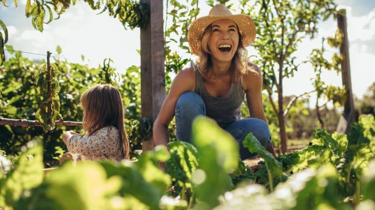 jardin mai jardiner