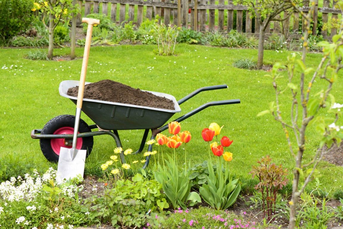 juin jardin potager brouette