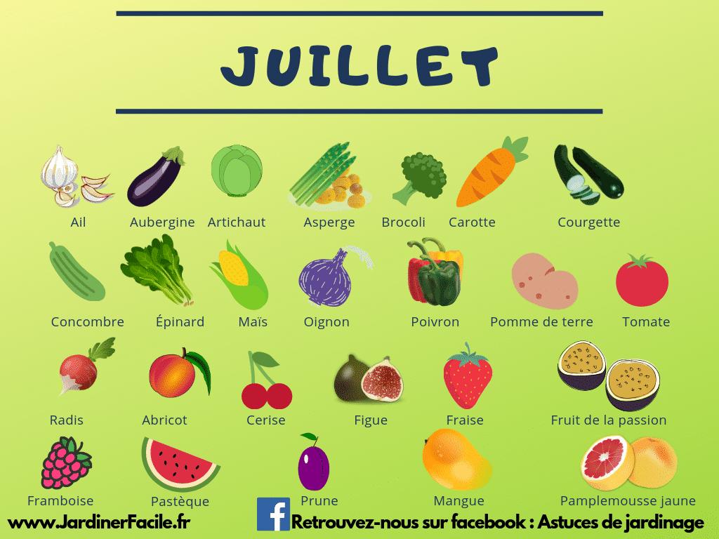juillet fruits légumes