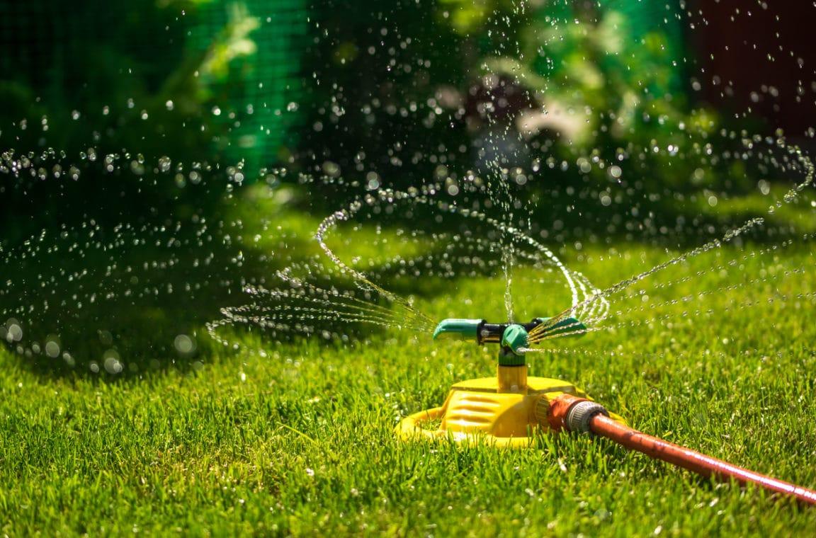 arrosage oscillant jardin