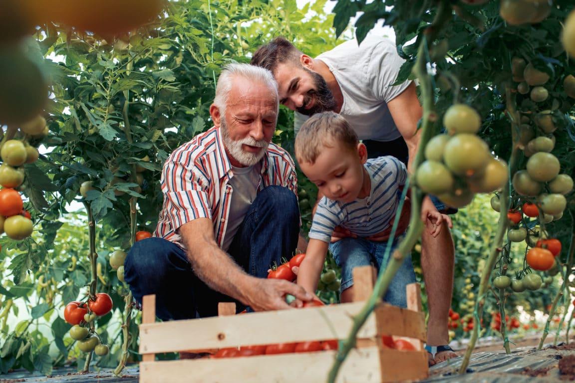 jardiner juillet enfants récolte