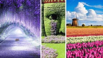 jardins incroyables