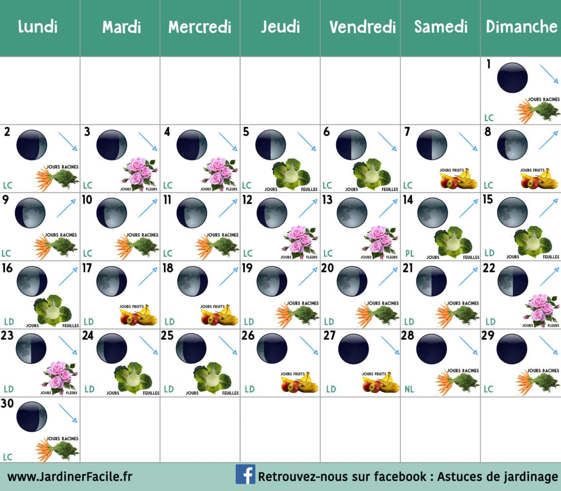 calendrier lunaire Septembre 2019 jardiner avec la lune