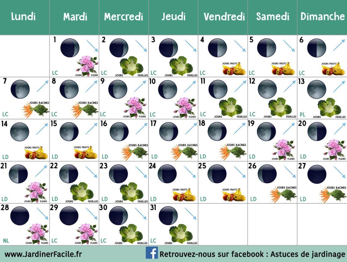 Calendrier Jardinage Lunaire 2019.Jardiner Avec La Lune Calendrier Lunaire Octobre 2019