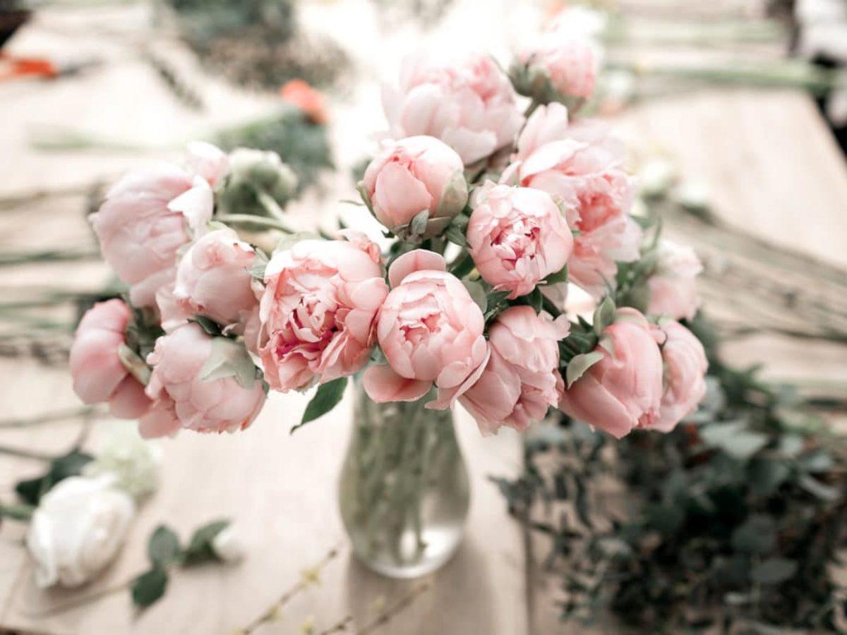 Comment Faire Secher Une Rose Fraiche aspirine : le secret pour garder son bouquet de fleurs en