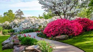 jardin thérapeutique chemin