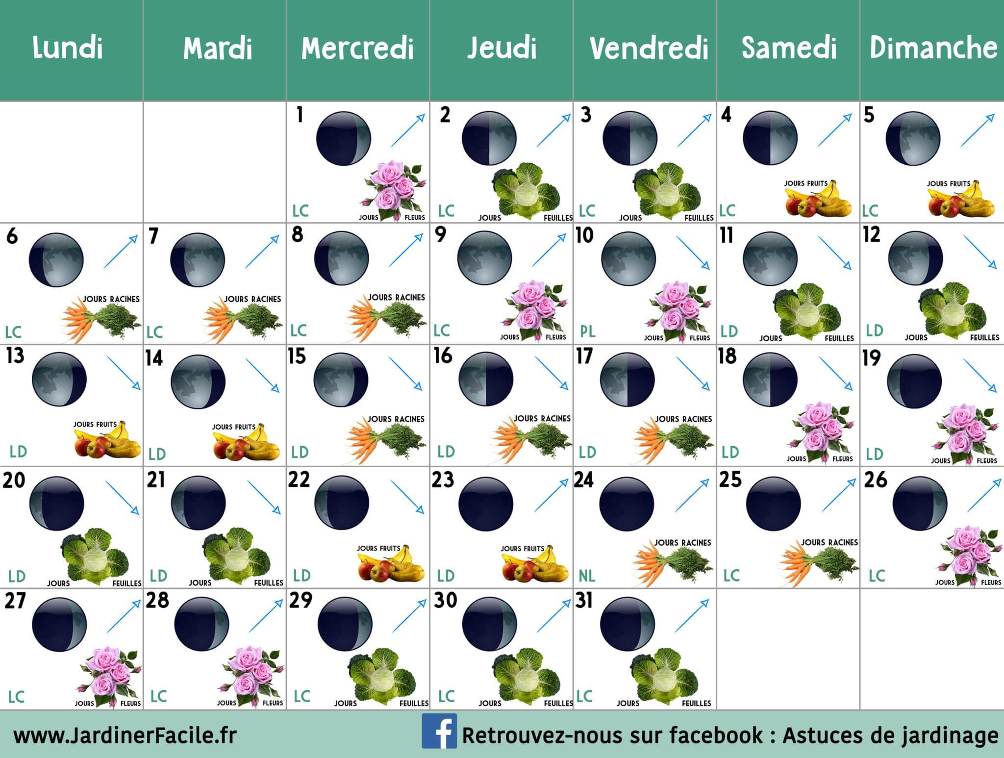 Le Jardin Potager En Janvier calendrier lunaire janvier 2020 : jardiner avec la lune