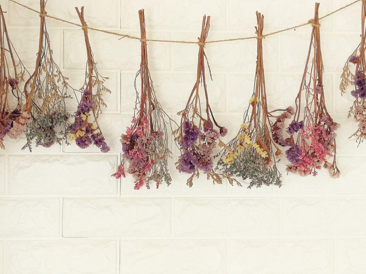Comment Faire Secher Une Rose Fraiche fleurs séchées : 14 fleurs et plantes idéales à faire sécher