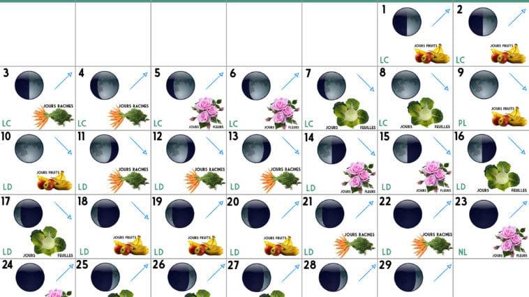Calendrier lunaire Février 2020