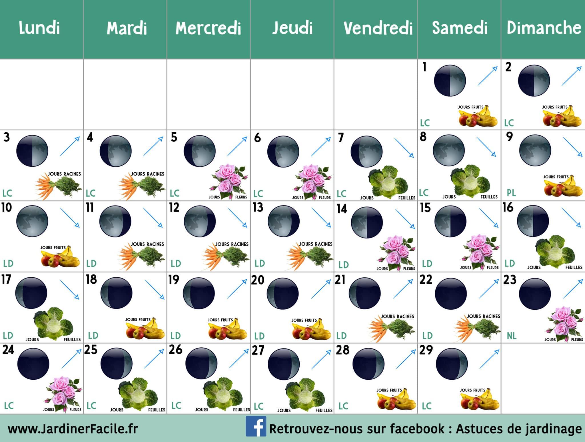Calendrier Lunaire Fevrier 2020 Jardiner Avec La Lune