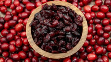 canneberge cranberry cranberries baie