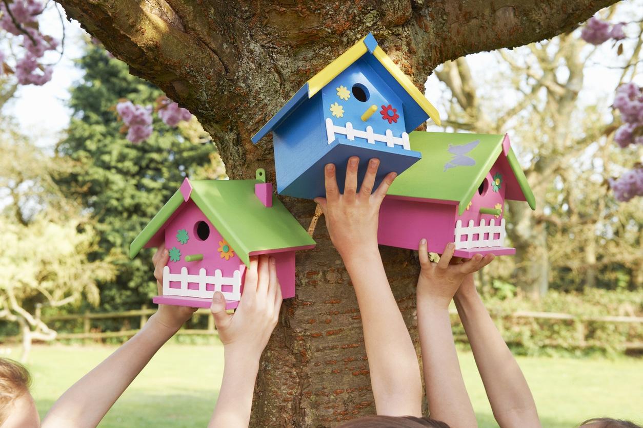 nichoir oiseaux enfant activité