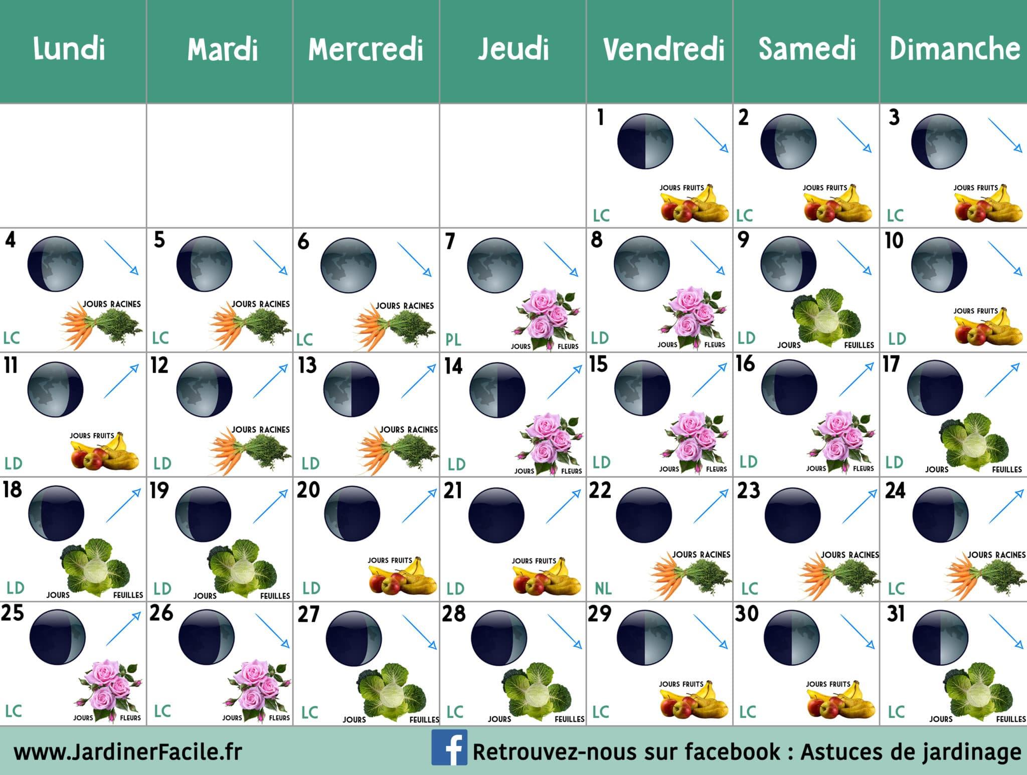 Calendrier lunaire Mai 2020 : jardiner avec la lune