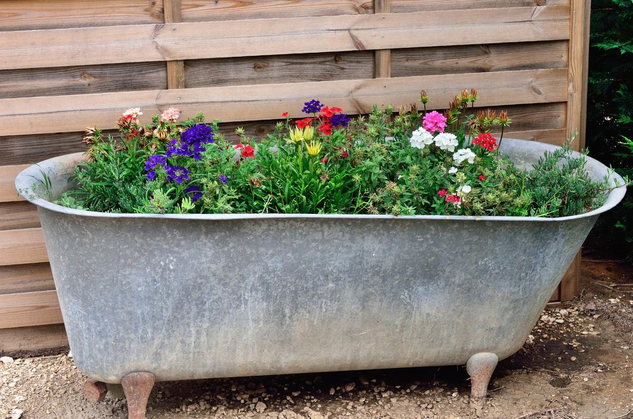 baignoire fleurs jardin