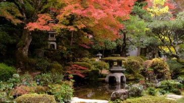 jardin japonais couverture