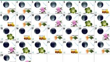 Calendrier lunaire Juin 2020
