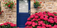 cottage jardin anglais