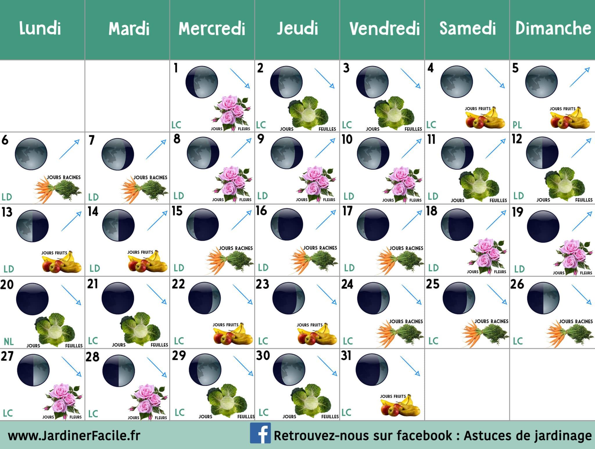 Calendrier lunaire Juillet 2020 : jardiner avec la lune