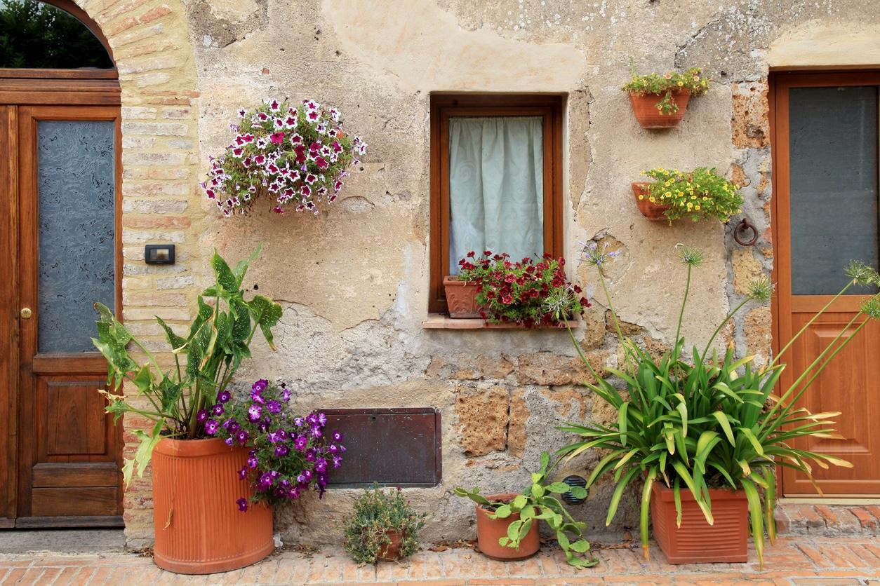 entree maison pots fleurs terre cuite
