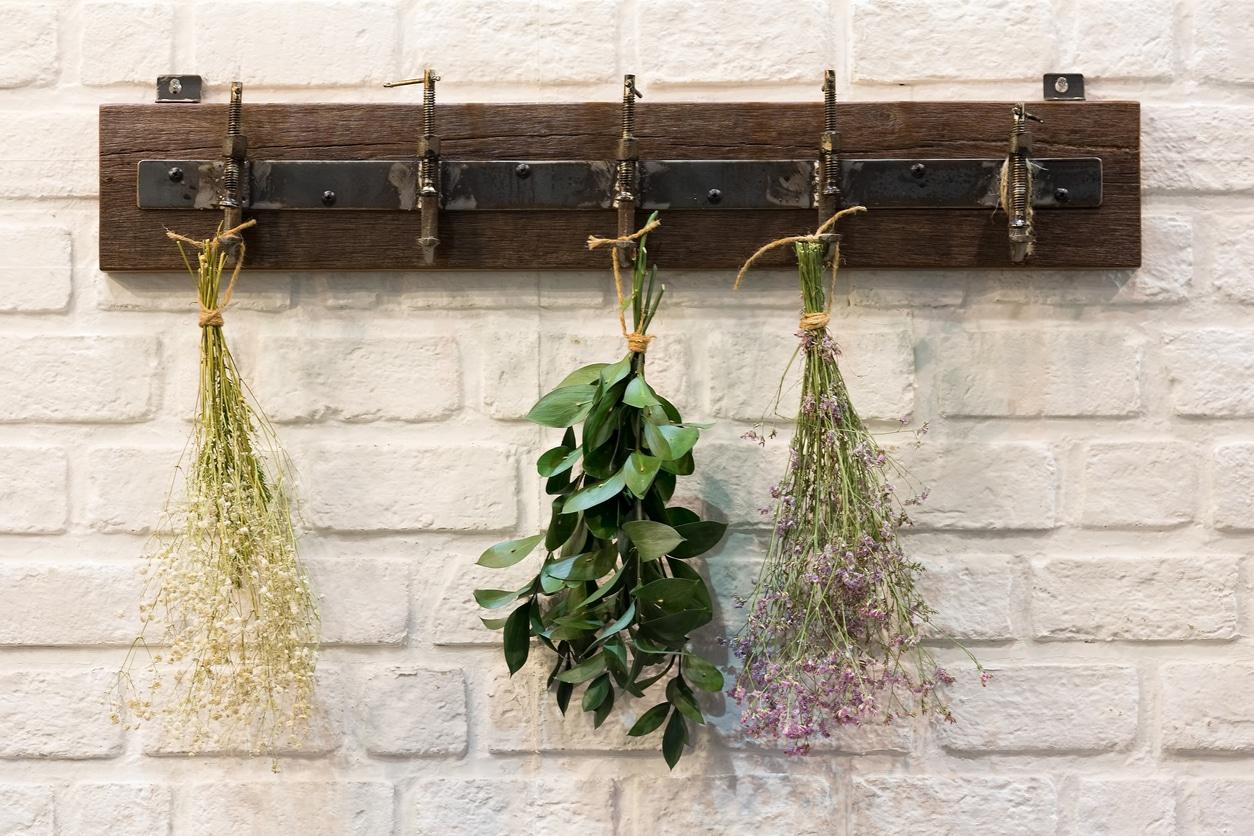 herbes aromatiques