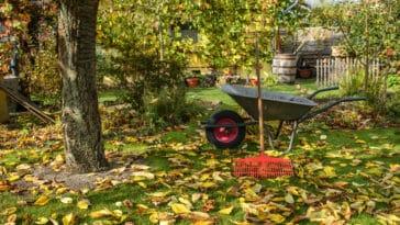 travaux d'automne
