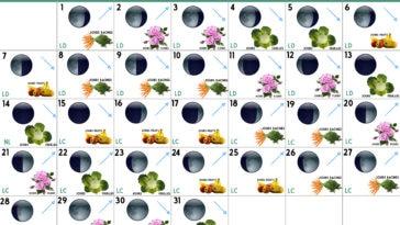 calendrier lunaire Décembre 2020