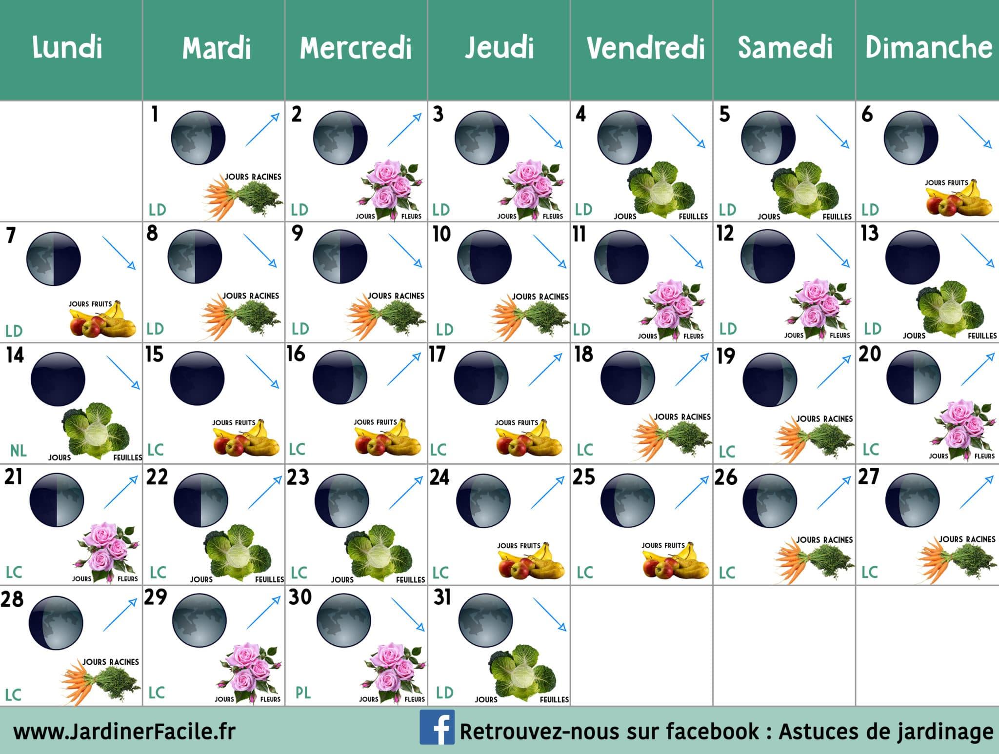 Calendrier Lunaire Decembre 2020 Jardiner Avec La Lune