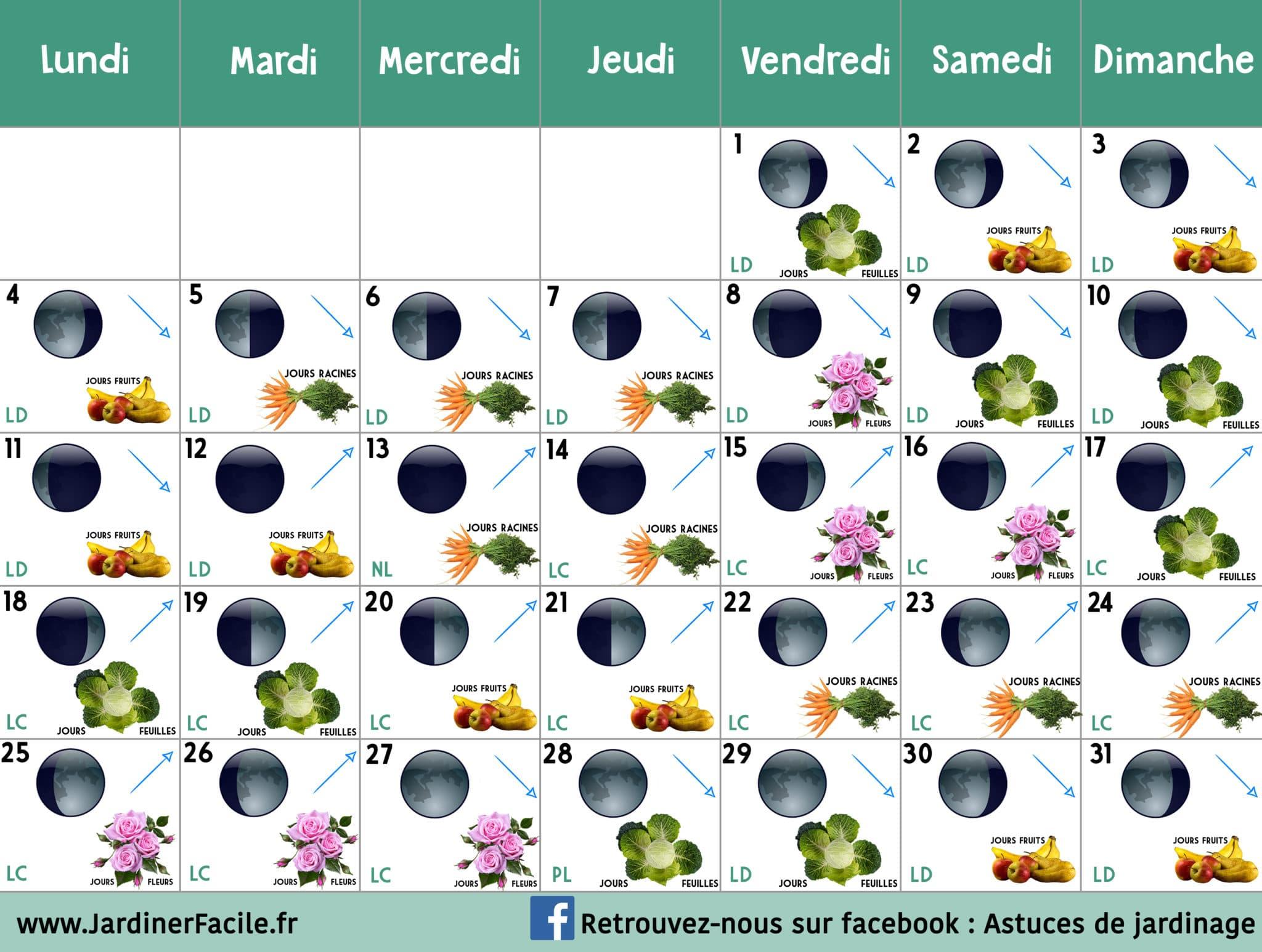 Calendrier lunaire Janvier 2021 : jardiner avec la lune