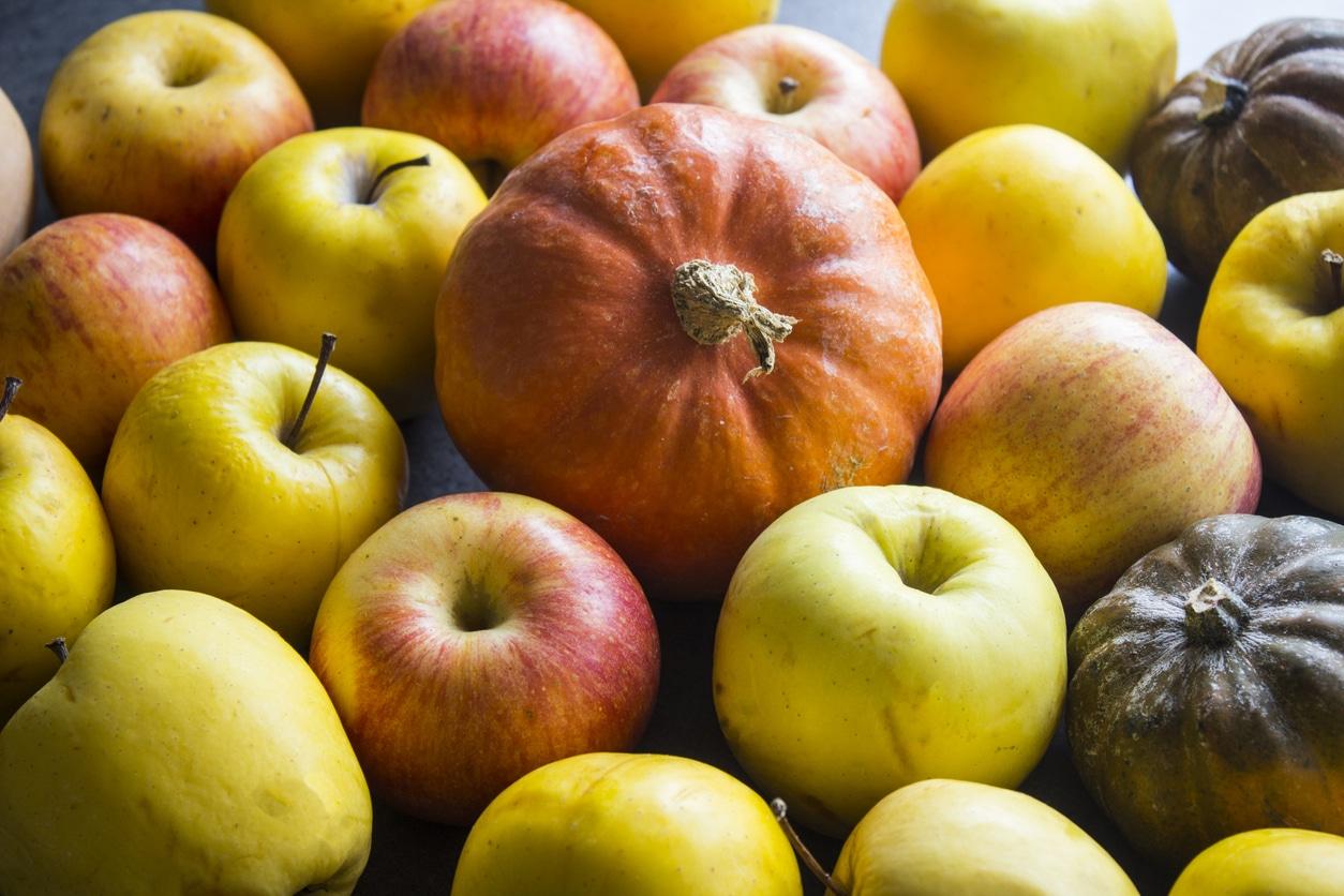 tarte pommes potiron