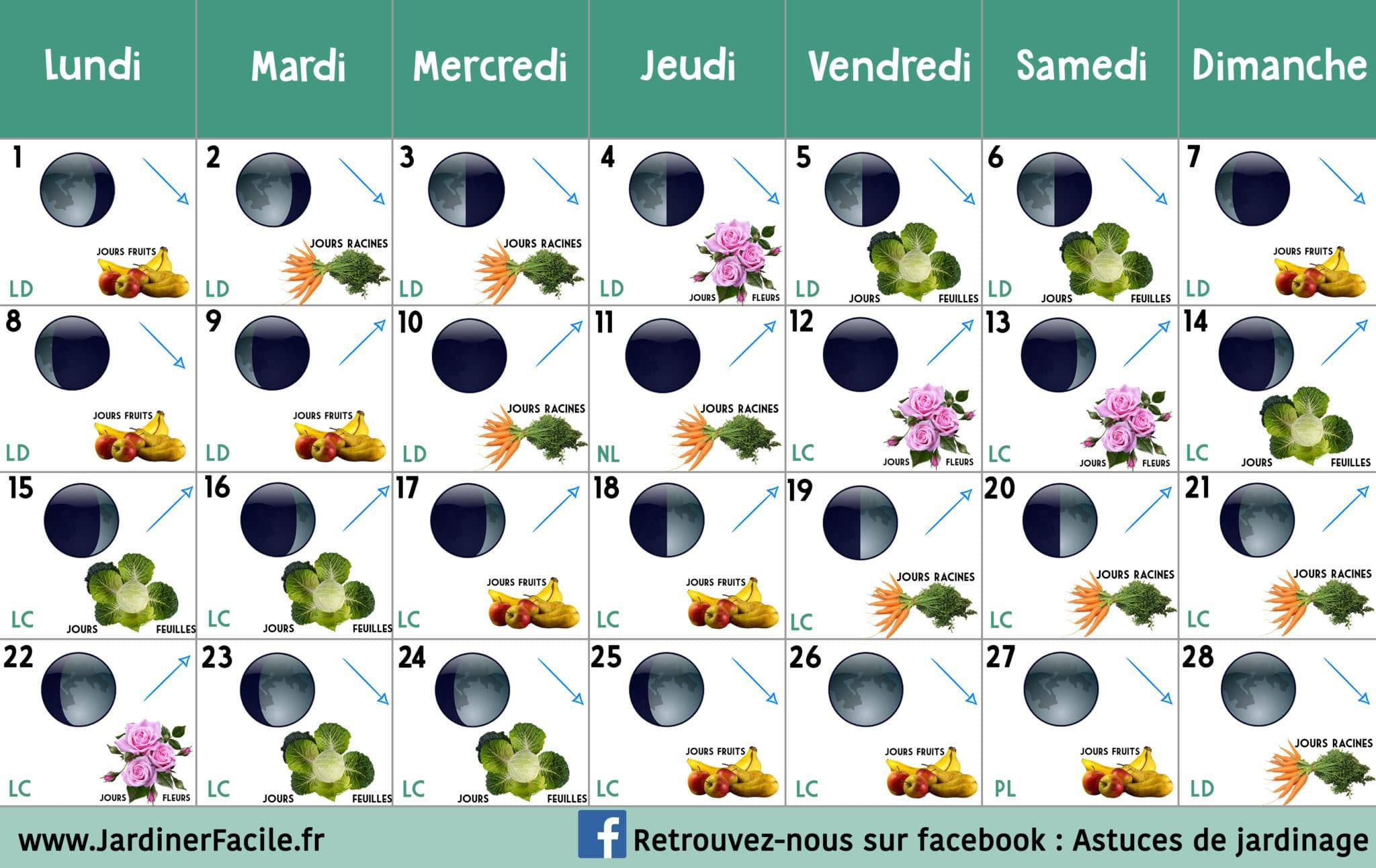 Calendrier lunaire Fevrier 2021