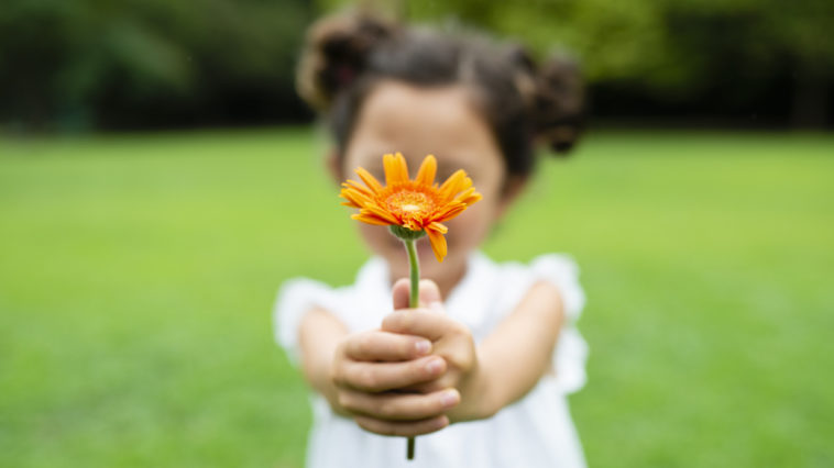 idées cadeaux jardin