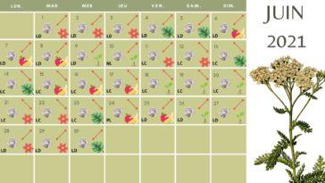 calendrier lunaire Juin 2021